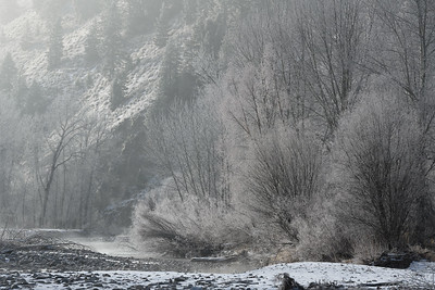 Big Wood River Hoarfrost, Idaho