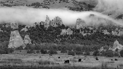 Morning Fog, Castle Rocks State Park, Idaho