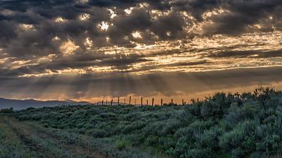 Camas Prairie Sunbeams