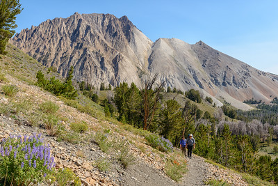 Hiking the Chamberlain Basin Trail, White Clouds Wilderness, Idaho