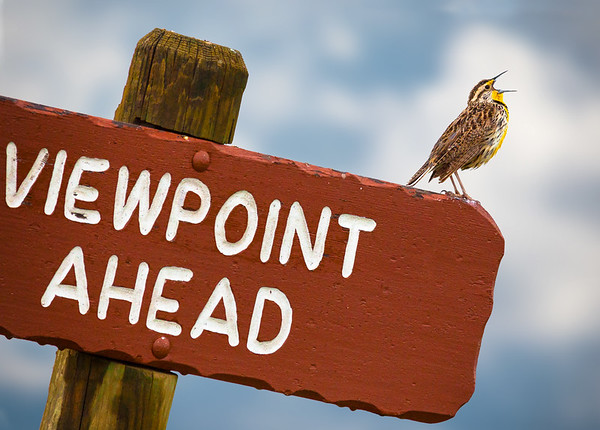 Don't miss the viewpoint!