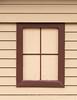 Nonwindow window 1
