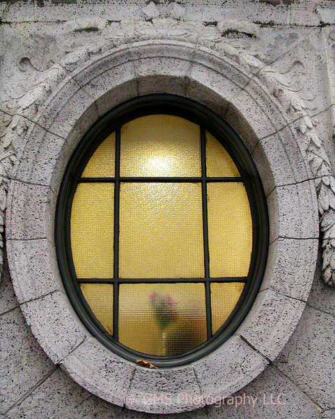 Window at Bryant Park in New York City
