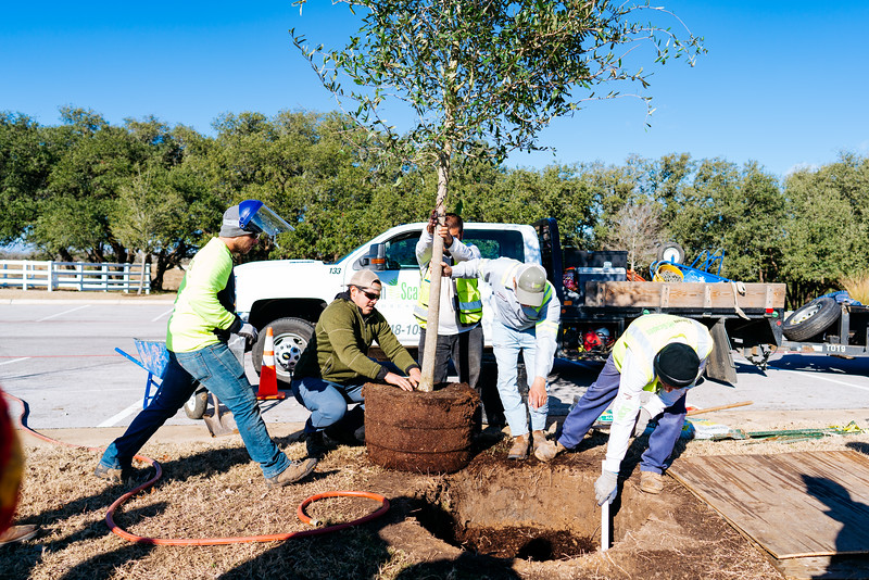 190112_Santa-Rita-Ranch-Tree-Planting-86