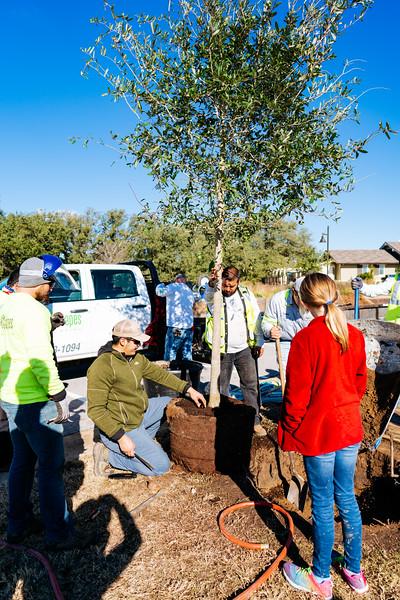 190112_Santa-Rita-Ranch-Tree-Planting-96