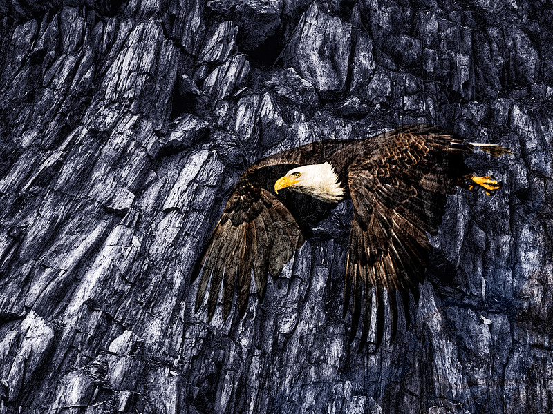 Bald Eagle Rock Master.jpg