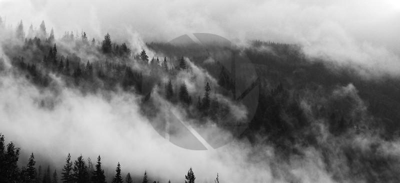 Kootenay Morning Mist