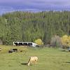 Faukland Landscape