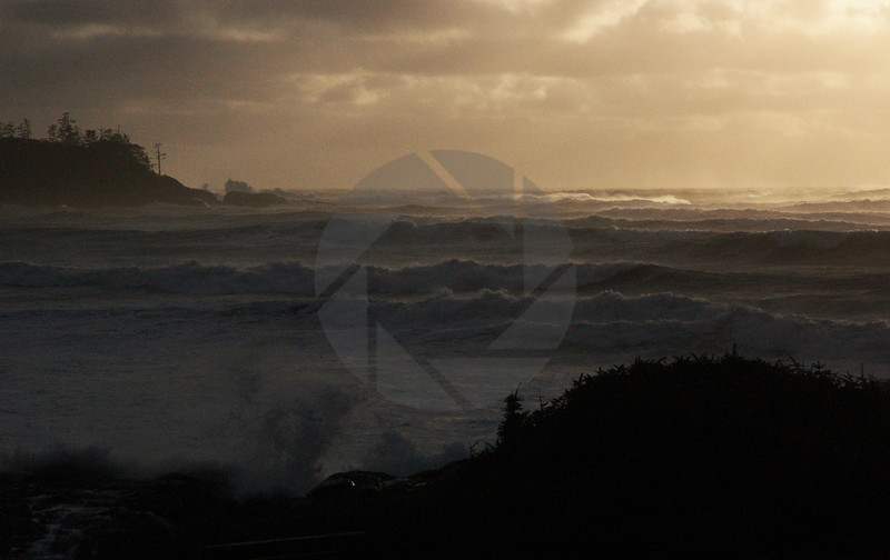 Tofino Waves III