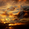 Tofino Sky
