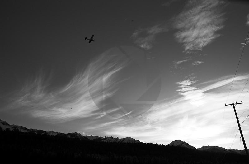 Flight at Dusk II