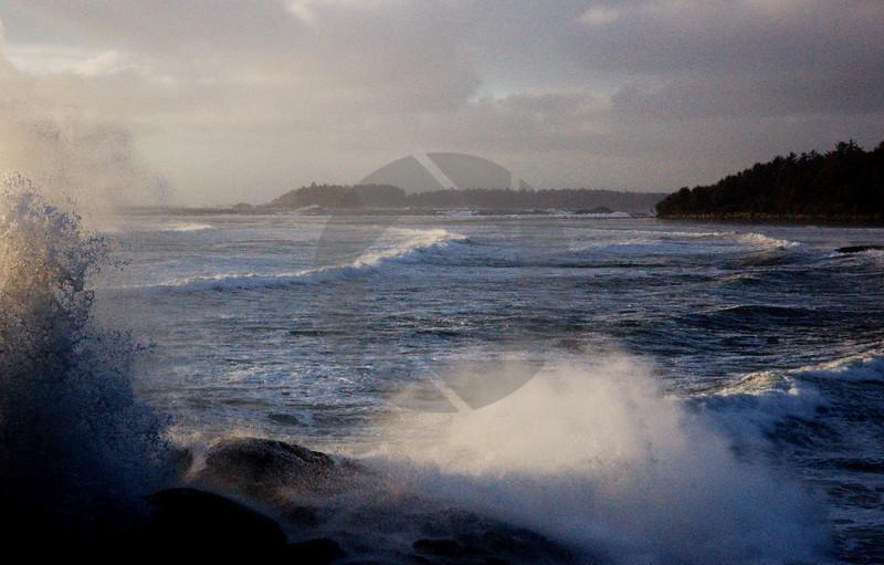 Tofino Waves I