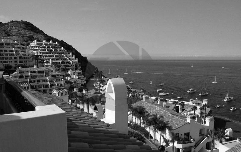 Paradise on Catalina Island