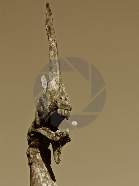 Moon Dragon - In Sepia Tone