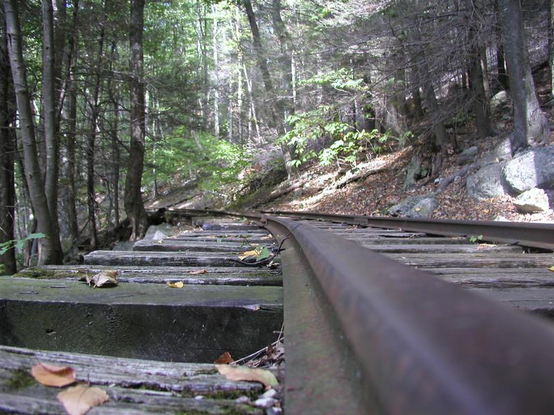 Old Logging Railroad<br /> Yankee Horse Ridge<br /> Blue Ridge Parkway<br /> Elev. 3140