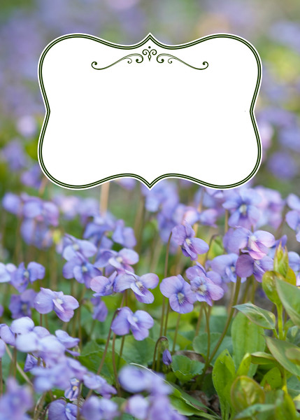 For Personalized Spring Messages