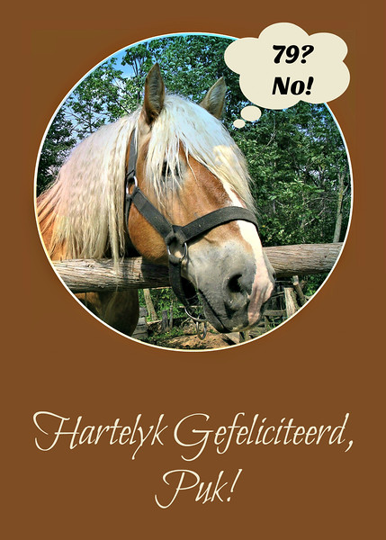 A Dutch Version