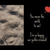 "<a href=""https://www.greetingcarduniverse.com/love-and-romance-cards/beach-coastal-seaside/happy-we-met-criss-crossing-1222946?aid=253730"">https://www.greetingcarduniverse.com/love-and-romance-cards/beach-coastal-seaside/happy-we-met-criss-crossing-1222946?aid=253730</a>"