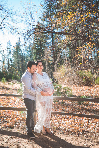 Maternity Pictures at Heaps Peak Arboretum
