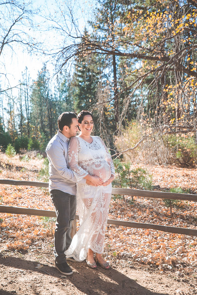 Maternity Pictures at Heaps Peak Arboretum