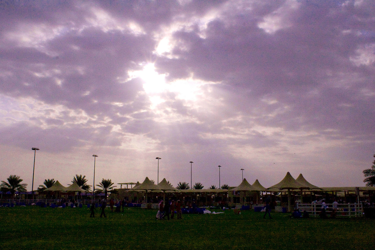 1.  Sunset at Emirates Endurance Village....<br /> can change the color as I have this in RAW