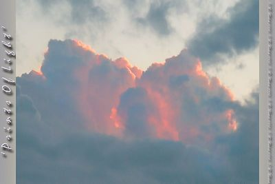 The only rosey colored clouds during this Sunset... I usually don't see them from behind!