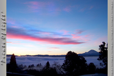 Morning Fog sleeting through the trees... Mount Rainier, looking out over Renton, Washington.  It doesn't LOOK cold... but I assure you...