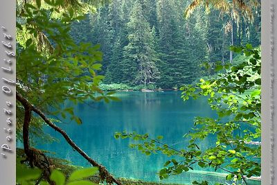 If you go to the NW Corner of Mount Rainier, past the Carbon River Ranger Station, about a mile and a half, hike up the trail for almost two miles, then you get to Green Lake.  This otherwise inaccessible lake really is... GREEN!  For years I had taken my photos to be processed by the 'professional' labs and had my trees turned blue in order to make the water look right.  This is the right color.  It's worth the hike.