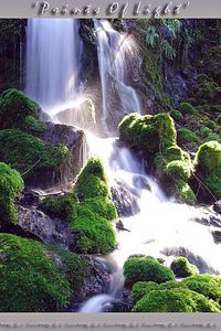 The sun was just breaking out when I was gazing at this waterfall... a page out of fairyland, I found it lying around Shasta Springs, California.
