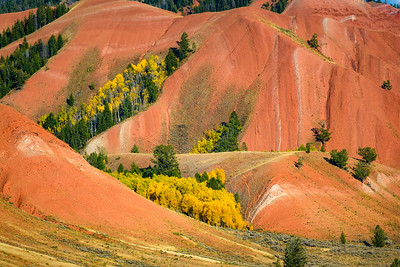 Fall in the Red Hills of Gros Ventre Wilderness, Wyoming
