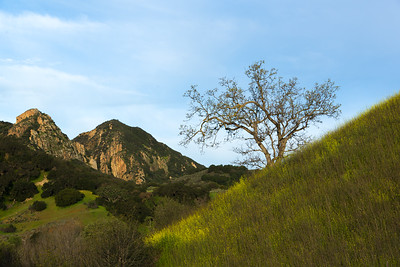 JD_SantaMonicaMountains_150314_0019