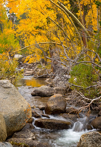 South Fork Bishop Creek, near Parcher's Resort