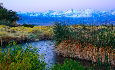 Dawn at Owens River
