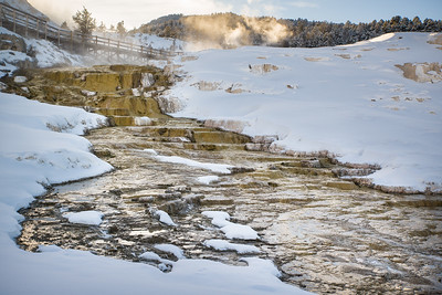 JD_Yellowstone_180120_0061