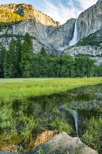 Yosemite Falls reflected in Cooks Meadow