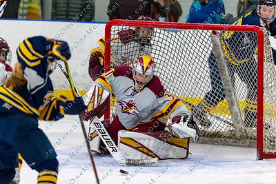Alvernia_Womens_Ice_Hockey_vs_Neumann_12-06-2019-26