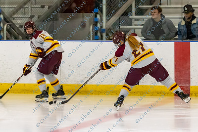 Alvernia_Womens_Ice_Hockey_vs_Neumann_12-06-2019-15