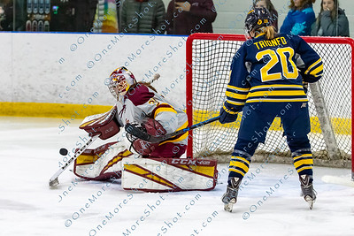 Alvernia_Womens_Ice_Hockey_vs_Neumann_12-06-2019-22