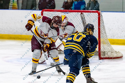 Alvernia_Womens_Ice_Hockey_vs_Neumann_12-06-2019-18