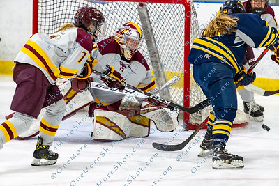 Alvernia_Womens_Ice_Hockey_vs_Neumann_12-06-2019-27