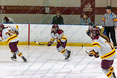 Alvernia_Womens_Ice_Hockey_vs_Neumann_12-06-2019-14