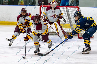 Alvernia_Womens_Ice_Hockey_vs_Neumann_12-06-2019-21