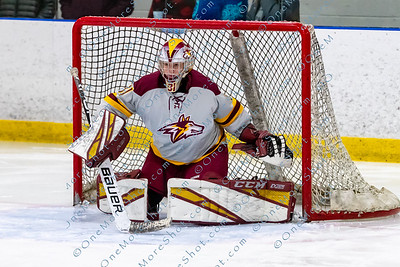 Alvernia_Womens_Ice_Hockey_vs_Neumann_12-06-2019-23