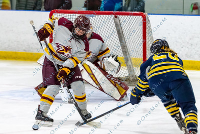 Alvernia_Womens_Ice_Hockey_vs_Neumann_12-06-2019-19