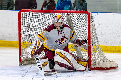Alvernia_Womens_Ice_Hockey_vs_Neumann_12-06-2019-24