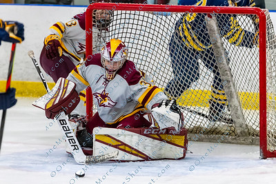 Alvernia_Womens_Ice_Hockey_vs_Neumann_12-06-2019-25
