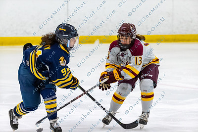 Alvernia_Womens_Ice_Hockey_vs_Neumann_12-06-2019-17