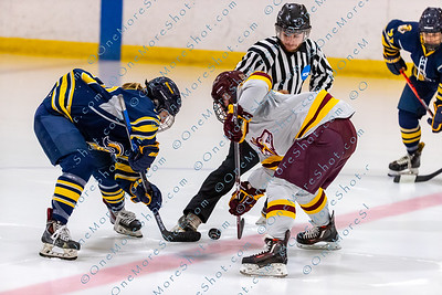 Alvernia_Womens_Ice_Hockey_vs_Neumann_12-06-2019-7