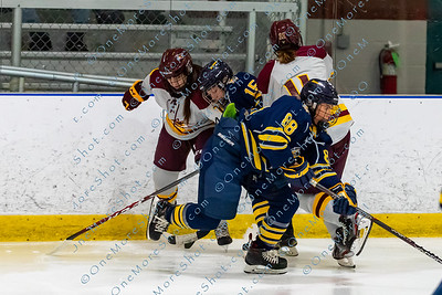 Alvernia_Womens_Ice_Hockey_vs_Neumann_12-06-2019-9