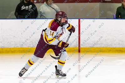 Alvernia_Womens_Ice_Hockey_vs_Neumann_12-06-2019-1